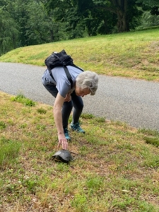 One resident says hello to a turtle